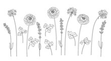 Monochrome Different Flowers On Stems Set