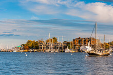 Annapolis Harbor On A Fall Evening