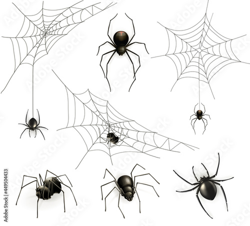 Photo Spiders and spider web, vector set