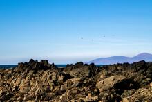 Rugged Basalt Terrain Overlooking The Irish Sea And The Northern Irish Mourne Mountains