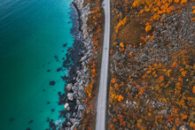 Autumn Landscape In Norway