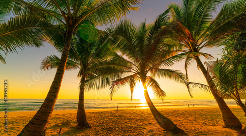 Silhouette coconut palm trees on beach at sunset or sunrise sky over sea Amazing light nature colorful landscape.