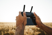 Male Hands Holding Remote Controller Of Quadcopter In Wheat Field