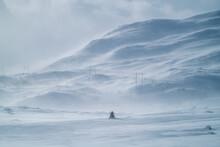 Snowmobile Driving Trough Scandinavian Winter