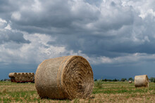 Hay Bales In A Field With A Trailer Full Of Other Bales In The Background Under A Dramatic Sky, Bientina, Pisa, Italy