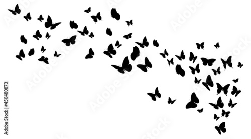 Flying black silhouettes of butterflies.Vector design element