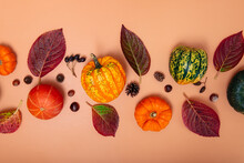 Autumn Composition. Pumpkins, Dried Leaves, Nuts And Cones On Neutral Orange Background. Autumn, Fall, Halloween, Thanksgiving Day Concept. Flat Lay, Top View.