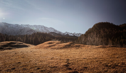 Alpin Hochgebirge Landschaft mit Hügeln, Weide und Wald an einem sonnigen Herbsttag - Poster Hintergrund