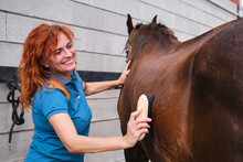 Woman Smiling While Brushing A Horse In A Stable.