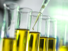 Pipetting A Sample Of Oil For Research Into Medicine And Chemicals