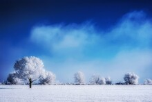 Frosty Snow Covered Winter Landscape