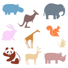 Various Animal Colorful Flat Vector Icon Set