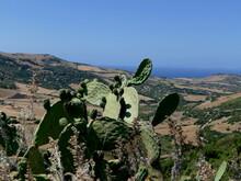 Landschaft In Nord-Sardinien
