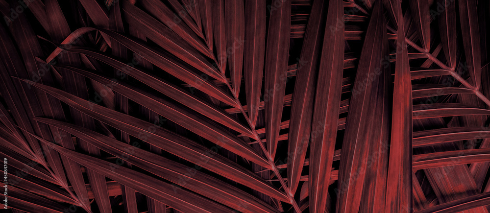 tropical leaves, exotic palm foliage, abstract natural pattern, dark nature background, red and purple toned process.