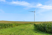 Wind Turbine On A Sunny Summer Day On Farm In Iowa
