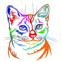 Cats Of Various Colors Vector Design Vector Illustration Print Poster Wall Art Canvas