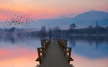 Silhouette Of Birds Flying Above The Lake With Wooden Pier At Amazing Sunset