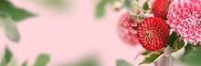 Banner With Autumn Bouquet Of Beautiful Flowers. Autumn Festive Decoration In Pink Colors, Selective Focus