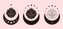 Set Of Mystical And Celestial Lotus Illustration. Hand Drawn Vector Design Elements