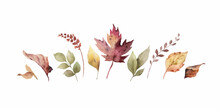 Watercolor Vector Banner With Fall Leaves And Branches Isolated On A White Background.