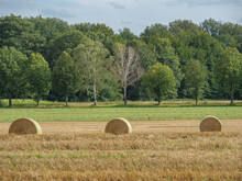 Wiesen Und Felder Bei Winterwijk In Den Niederlanden