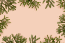 Frame Made Of Fir Branches On A Beige Background. Natural Composition.