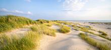 Dune Beach Panorama Near The Coast