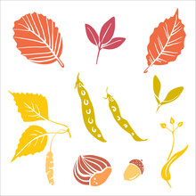 Colorful Paper Cut Autumn Leaves And Fruits Collection Isolated On White Background. Doodle Hand Drawn Icons. Vector Illustration.