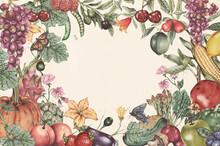 Hand Drawn Tropical Fruit Frame Illustration
