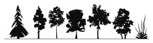 Wheat Field Silhouette. Tree Silhouettes. Tree, Silhouette, Nature, Vector, Leaf, Plant, Illustration, Forest, Branch, Black, Wood, Trees, Flower, Pine, Leaves, Season.