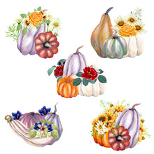 Watercolor Autumn Pumpkins And Flowers, Perfect To Use On The Web Or In Print