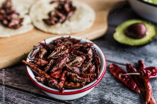 Fototapeta grasshoppers or chapulines snack