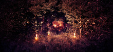 A Dense Forest With Christmas Trees And Birches, On The Trail Between The Trees There Is A Pumpkin With Glowing Eyes And Mouth, Halloween, Haze And Fog. A Terrible Halloween Night