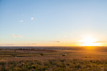 Sunset With Sun On Horizon Over Grassy Farm Paddock With Clear Sky