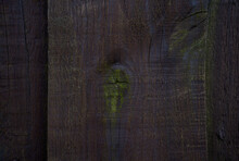 Wooden Texture Background, Old Grunge Dark Brown Wood Fence Panel With Moss, Top View Hardwood Structural Surface With Shadow.
