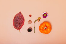 Minimalist Autumn Composition. Mini Pumpkin, Fallen Leaf, Nuts, Cone, Chrysanthemum Flower And Rosehip Berries On Neutral Orange Background. Autumn, Fall, Thanksgiving Day Concept. Flat Lay, Top View.