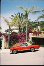 Classic Car Summer