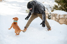 Active Man And Dog Playing In Forest In Winter