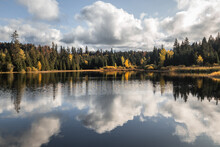 Reflection Of Autumn Forest And Clouds In Lake