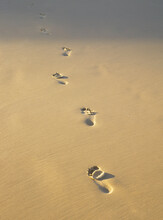 One Set Of Footprints In The Sand