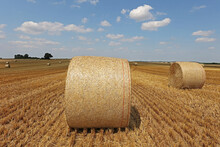 Harvested Field With Several Rolled Hay Bales In Summer