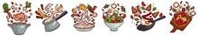 Cooking And Preparing Food, Recipes And Menu Set