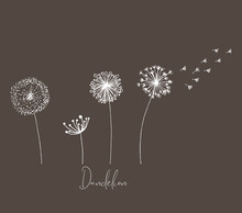 Hand Drawn Set Of White Dandelion, Dandelion With Flying Seeds In Cute Doodle Style. Vector Illustratin For Fabric, Card Design Or Baby Clothings.