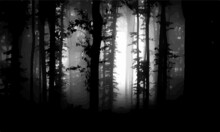 Dark Forest Fog Atmospheric Black Background Wallpaper Vector Illustration