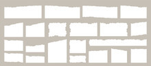 Torn Paper. Torn Paper Shits Set. Torn Paper Vector. Torn Paper Collection Set. Vector Illustration