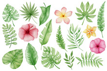 Watercolor Set Of Tropical Leaves And Flowers Isolated On White Background.