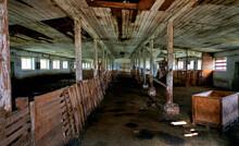 Large Village Cattle Shed