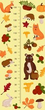 Kids Height Chart With Forest Animals. Childish Meter Wall For Nursery Design. Vector Illustration, Cartoon Style