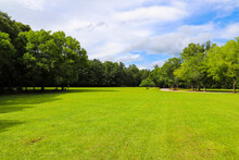 A Long Stretch Of Lush Green Grass Surrounded By Lush Green And Autumn Colored Trees In The Park With Blue Sky And Clouds Near A Paved Road At McIntosh Reserve Park In Whitesburg Georgia