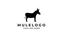 Black Mule Animal Horse Logo Design Inspiration